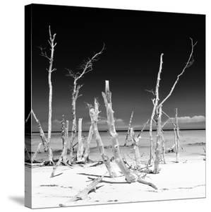 Cuba Fuerte Collection SQ BW - Wild Ocean by Philippe Hugonnard