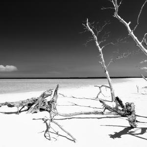 Cuba Fuerte Collection SQ BW - Wild White Sand Beach by Philippe Hugonnard