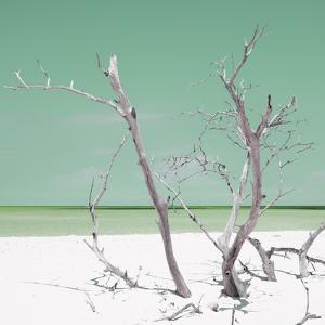 Cuba Fuerte Collection SQ - Green Stillness by Philippe Hugonnard
