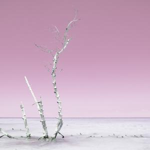 Cuba Fuerte Collection SQ - Ocean Nature - Pastel Pink by Philippe Hugonnard
