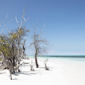 Cuba Fuerte Collection SQ - Sandy Beach Pastel Blue by Philippe Hugonnard