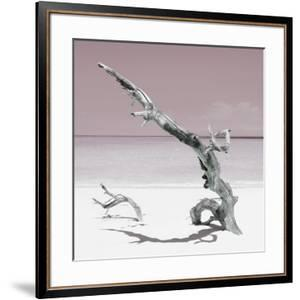 Cuba Fuerte Collection SQ - Solitary Tree - Pastel Red by Philippe Hugonnard
