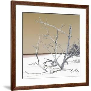 Cuba Fuerte Collection SQ - Tropical Beach Nature - Pastel Honey by Philippe Hugonnard