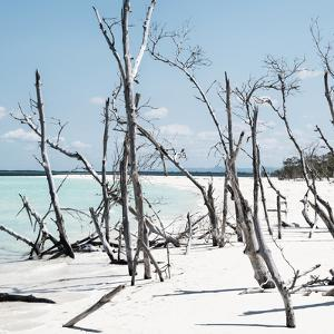 Cuba Fuerte Collection SQ - Tropical Wild Beach II by Philippe Hugonnard