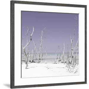Cuba Fuerte Collection SQ - Wild Beach - Pastel Purple by Philippe Hugonnard
