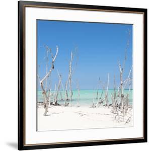 Cuba Fuerte Collection SQ - Wild Beach by Philippe Hugonnard