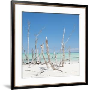 Cuba Fuerte Collection SQ - Wild Ocean by Philippe Hugonnard