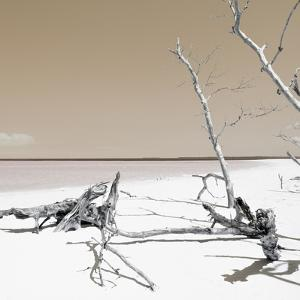 Cuba Fuerte Collection SQ - Wild White Sand Beach - Pastel Orange by Philippe Hugonnard