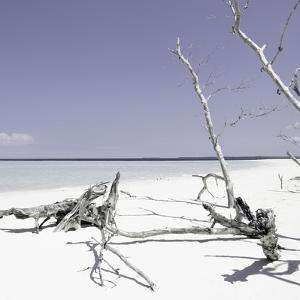 Cuba Fuerte Collection SQ - Wild White Sand Beach - Pastel Purple by Philippe Hugonnard