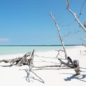 Cuba Fuerte Collection SQ - Wild White Sand Beach by Philippe Hugonnard