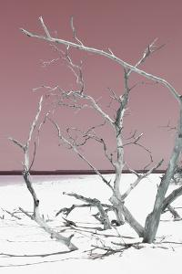 Cuba Fuerte Collection - Tropical Beach Nature II - Pastel Red by Philippe Hugonnard