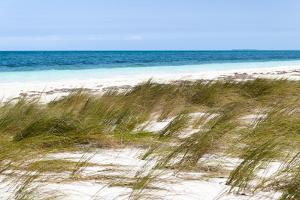 Cuba Fuerte Collection - Wild Beach by Philippe Hugonnard