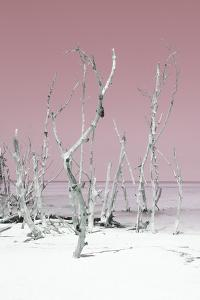 Cuba Fuerte Collection - Wild White Sand Beach II - Pastel Pink by Philippe Hugonnard