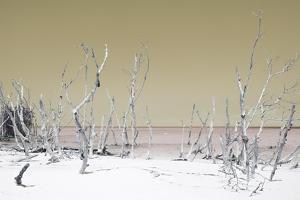 Cuba Fuerte Collection - Wild White Sand Beach - Pastel Dark Yellow by Philippe Hugonnard