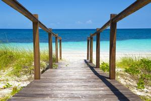 Cuba Fuerte Collection - Wooden Jetty on the Beach by Philippe Hugonnard