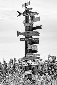 Destination Signs - Florida by Philippe Hugonnard