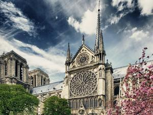 Details of Notre Dame - Paris - France by Philippe Hugonnard