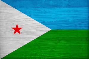 Djibouti Flag Design with Wood Patterning - Flags of the World Series by Philippe Hugonnard