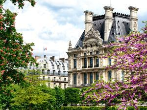 Garden of the Tuileries, the Louvre, Paris, France by Philippe Hugonnard