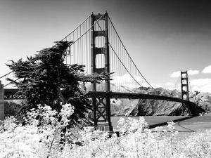 Landscape, Golden Bridge, Black and White Photography, San Francisco, California, United States by Philippe Hugonnard