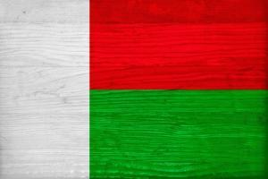 Madagascar Flag Design with Wood Patterning - Flags of the World Series by Philippe Hugonnard