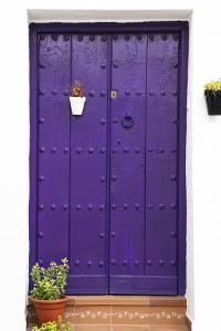 Made in Spain Collection - Old Plum Gateway by Philippe Hugonnard