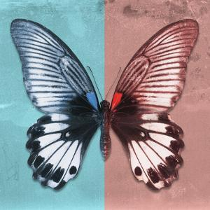 Miss Butterfly Agenor Sq - Turquoise & Red by Philippe Hugonnard