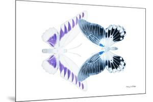 Miss Butterfly Duo Brookagenor - X-Ray White Edition by Philippe Hugonnard