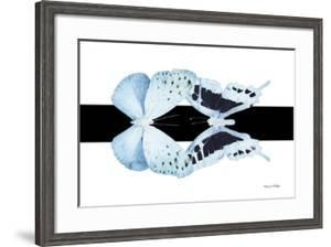 Miss Butterfly Duo Euploanthus - X-Ray B&W Edition by Philippe Hugonnard
