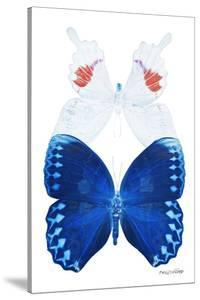 Miss Butterfly Duo Formohermos II - X-Ray White Edition by Philippe Hugonnard