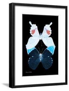 Miss Butterfly Duo Hermosana II - X-Ray Black Edition by Philippe Hugonnard
