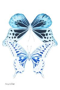 Miss Butterfly Duo Melaxhus II - X-Ray White Edition by Philippe Hugonnard