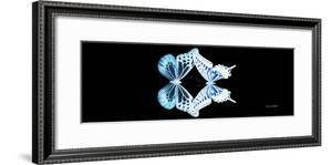 Miss Butterfly Duo Melaxhus Pan - X-Ray Black Edition by Philippe Hugonnard