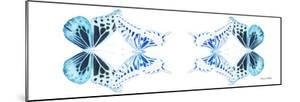 Miss Butterfly Duo Melaxhus Pan - X-Ray White Edition II by Philippe Hugonnard