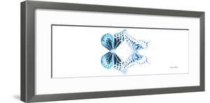 Miss Butterfly Duo Melaxhus Pan - X-Ray White Edition by Philippe Hugonnard