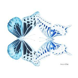 Miss Butterfly Duo Melaxhus Sq - X-Ray White Edition by Philippe Hugonnard