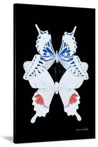 Miss Butterfly Duo Parisuthus II - X-Ray Black Edition by Philippe Hugonnard
