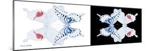 Miss Butterfly Duo Parisuthus Pan - X-Ray B&W Edition by Philippe Hugonnard
