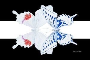 Miss Butterfly Duo Parisuthus - X-Ray B&W Edition II by Philippe Hugonnard