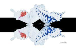 Miss Butterfly Duo Parisuthus - X-Ray B&W Edition by Philippe Hugonnard