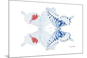 Miss Butterfly Duo Parisuthus - X-Ray White Edition by Philippe Hugonnard
