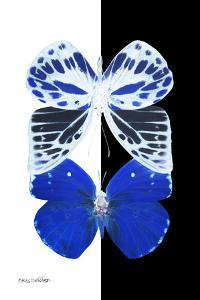 Miss Butterfly Duo Priopomia II - X-Ray B&W Edition by Philippe Hugonnard