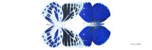 Miss Butterfly Duo Priopomia Pan - X-Ray White Edition by Philippe Hugonnard