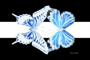 Miss Butterfly Duo Xugenutia - X-Ray B&W Edition II by Philippe Hugonnard
