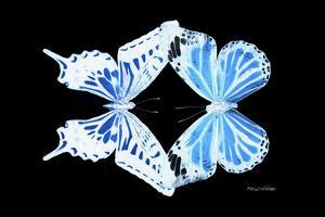 Miss Butterfly Duo Xugenutia - X-Ray Black Edition by Philippe Hugonnard