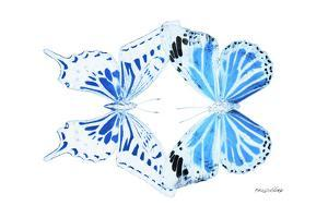 Miss Butterfly Duo Xugenutia - X-Ray White Edition by Philippe Hugonnard