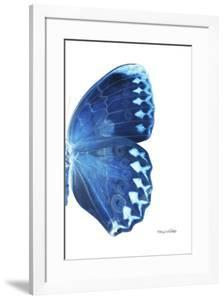Miss Butterfly Formosana - X-Ray Right White Edition by Philippe Hugonnard