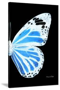 Miss Butterfly Genutia - X-Ray Right Black Edition by Philippe Hugonnard
