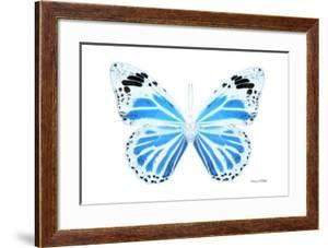 Miss Butterfly Genutia - X-Ray White Edition by Philippe Hugonnard