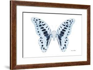 Miss Butterfly Graphium - X-Ray White Edition by Philippe Hugonnard